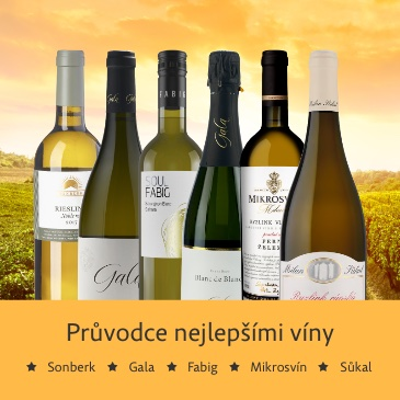 Průvodce nejlepšími víny