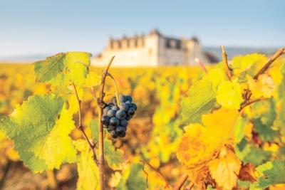 Bourgogne / Burgundsko