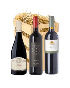 Degustační set vín - Merloty, Merloty přicházejí