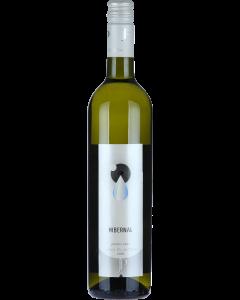 Vinařství Plaček - Hibernal 2019, pozdní sběr, polosladké