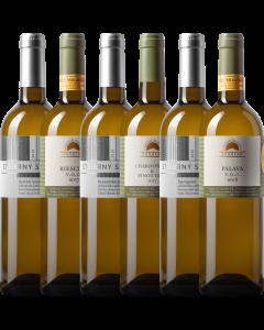 Degustační set vín - Ochutnávka Sonberku