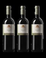 Degustační set vín - Merlotová vertikála ročníků 2016 - 2018